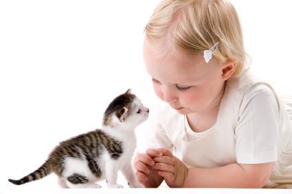 Anne and kitten